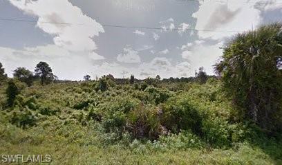 1067 Dearborn St, Lehigh Acres, FL 33974
