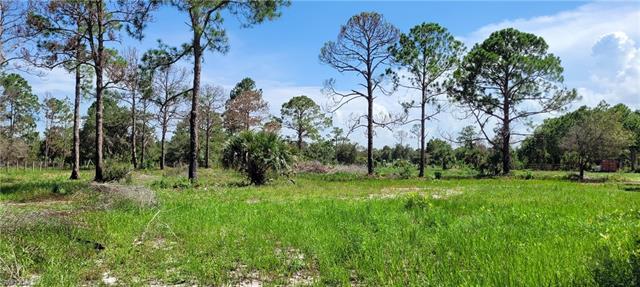 384 Hunting Club Ave, Clewiston, FL 33440