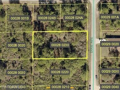 1421 Dixie Ave, Lehigh Acres, FL 33972