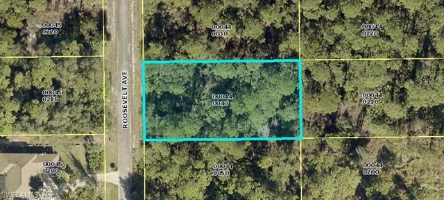 1916 Roosevelt Ave, Lehigh Acres, FL 33972