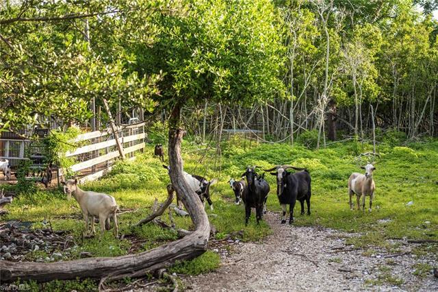 Mound Key, Estero, FL 34134