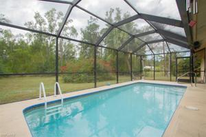 6020 Star Grass Ln, Naples, FL 34116
