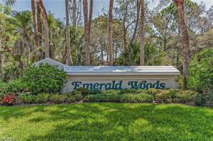75 Emerald Woods Dr G6, Naples, FL 34108