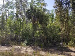24310 Rocky Rd, Bonita Springs, FL 34135