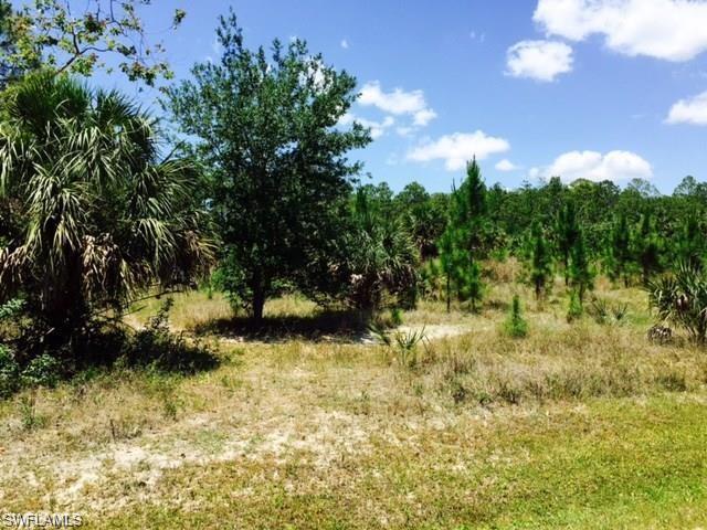 24742 Rodas Dr, Bonita Springs, FL 34135