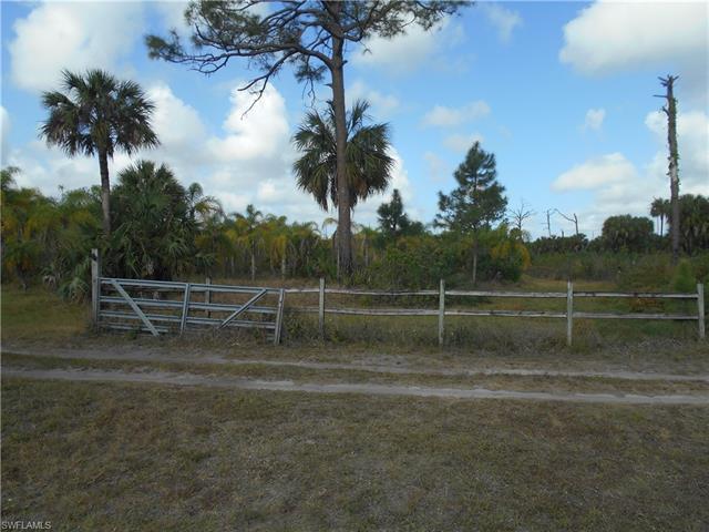 1255 Dove Tree St, Naples, FL 34117