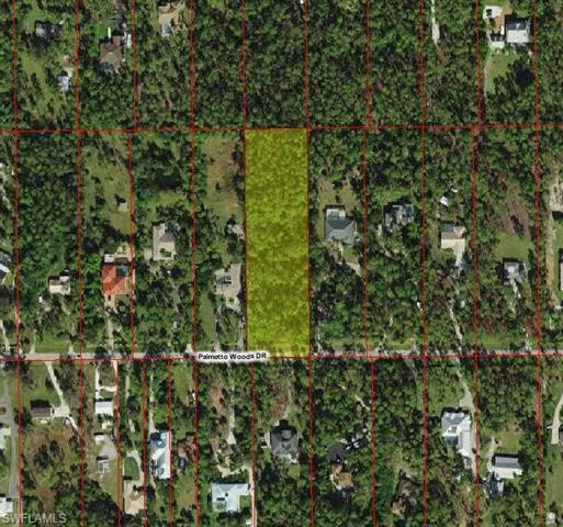 Palmetto Woods Dr, Naples, FL 34119