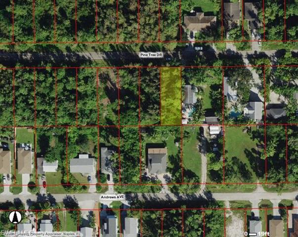Pine Tree Lot 39 Dr, Naples, FL 34112