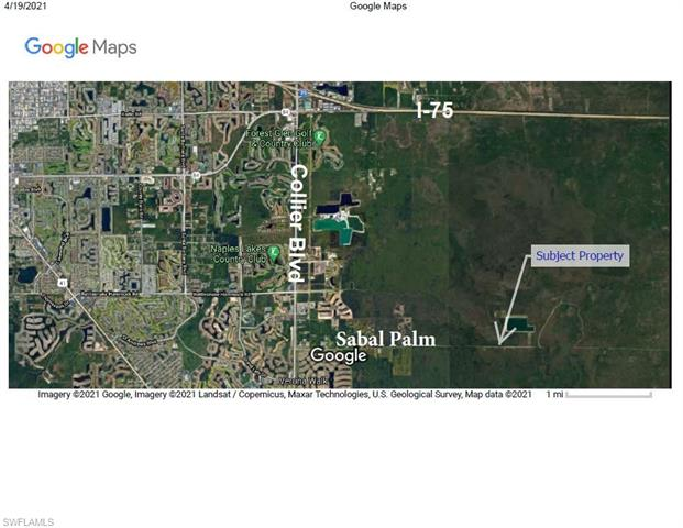 Sabal Palm, Naples, FL 34114
