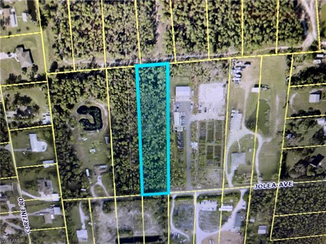 10574 Jolea Ave, Bonita Springs, FL 34135