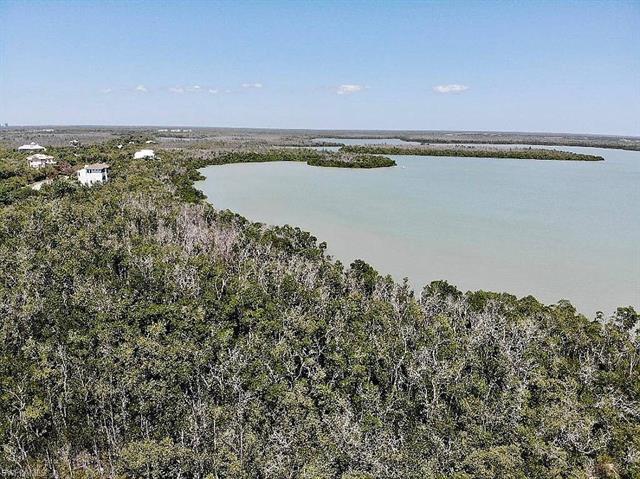 1059 Blue Hill Creek Dr, Marco Island, FL 34145