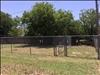 1642 Sewell Street, Abilene, TX 79605