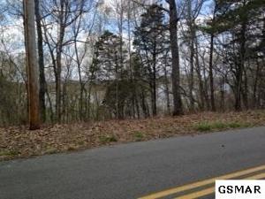 00 Muddy Creek Road, Dandridge, TN 37725