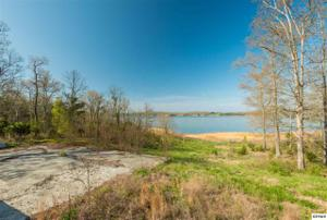 1511 Cherry Brook Dr, Dandridge, TN 37725
