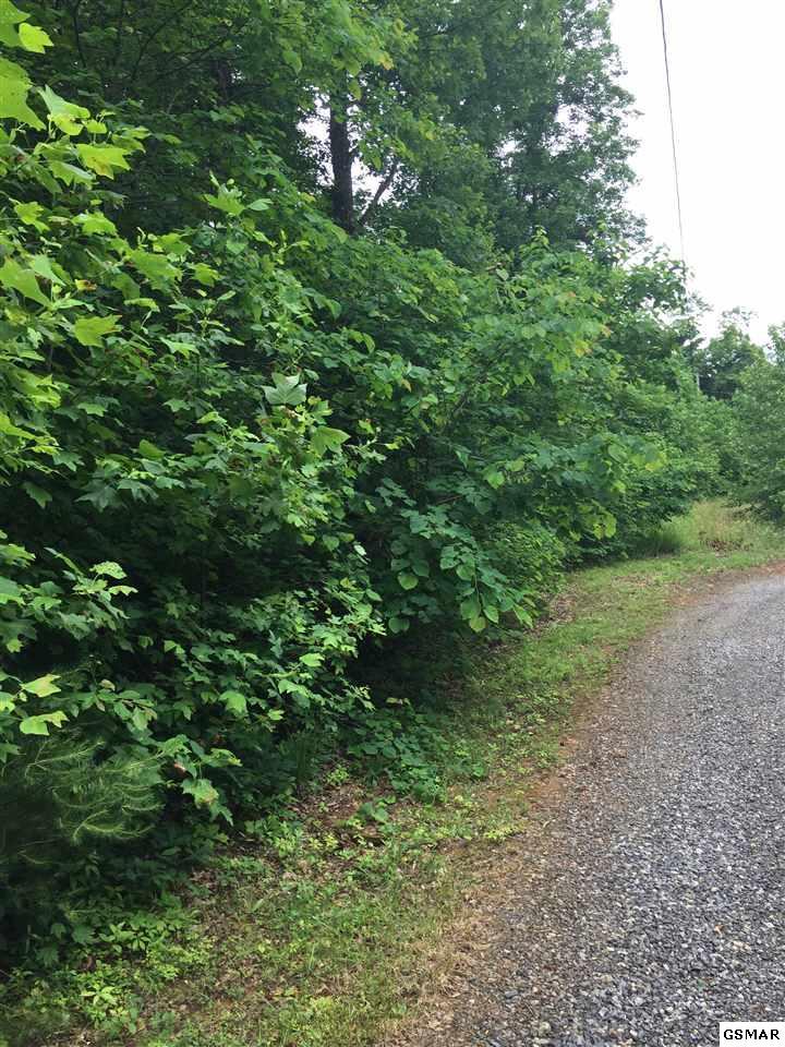 Lot 23 Greenwood Road, Newport, TN 37821