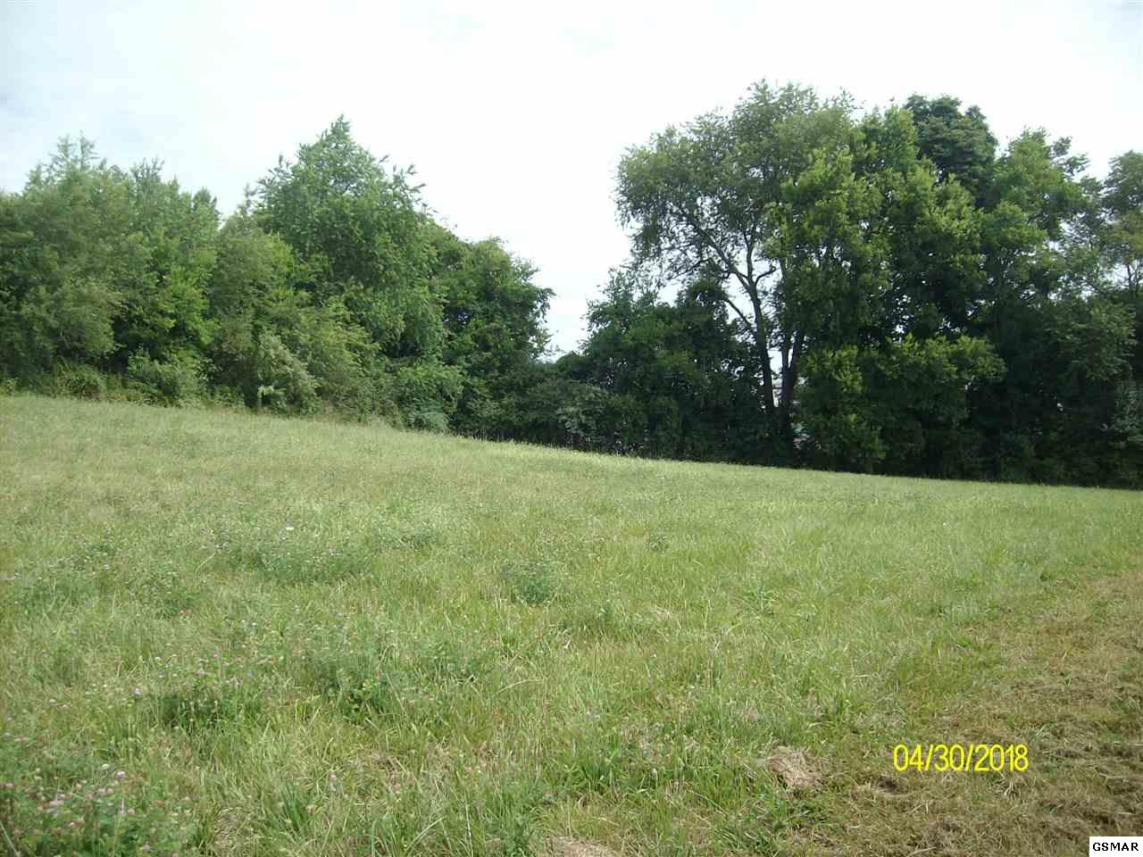Lot 20 Rippling Waters Cir, Sevierville, TN 37876
