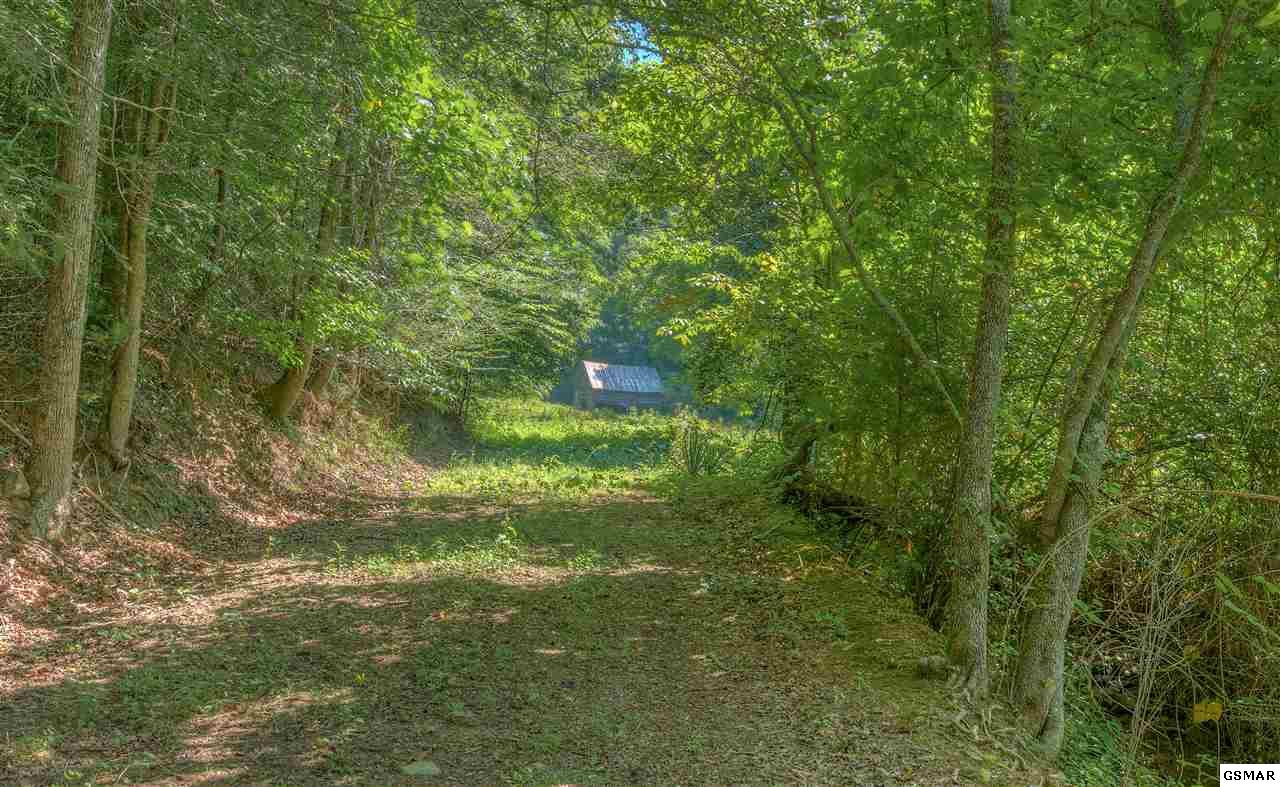 Jones Cove Road, Sevierville, TN 37876