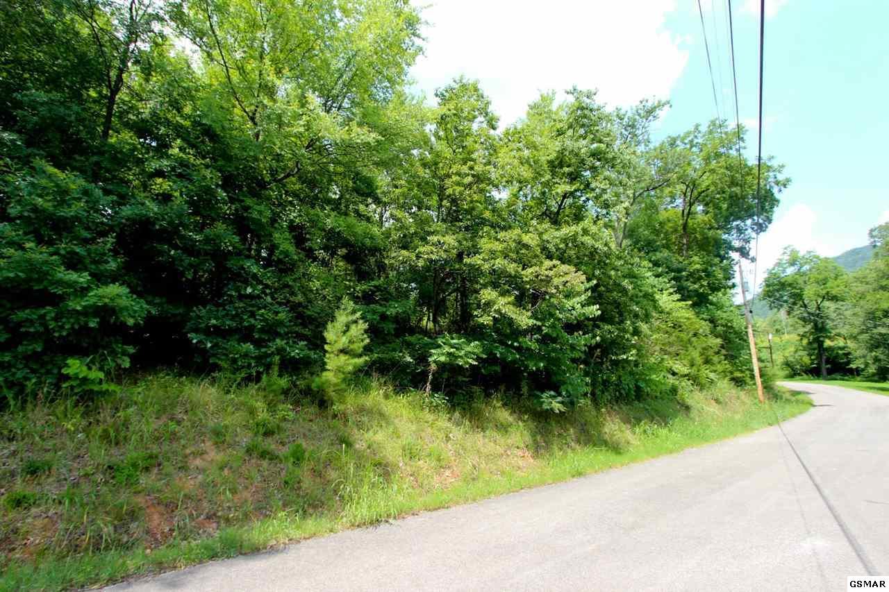 Lot 1 Tomahawk Ridge Rd, Cosby, TN 37722