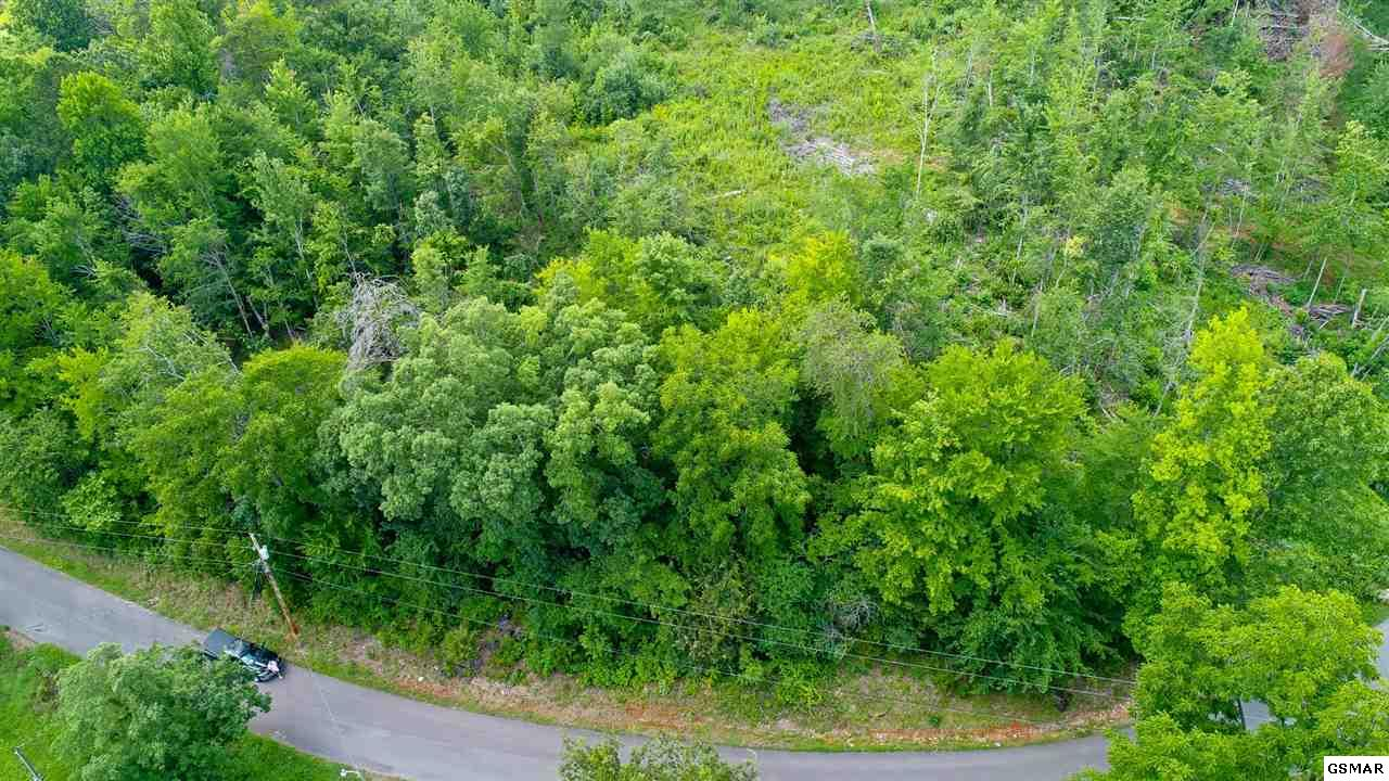 Lot 2 Tomahawk Dr, Cosby, TN 37722