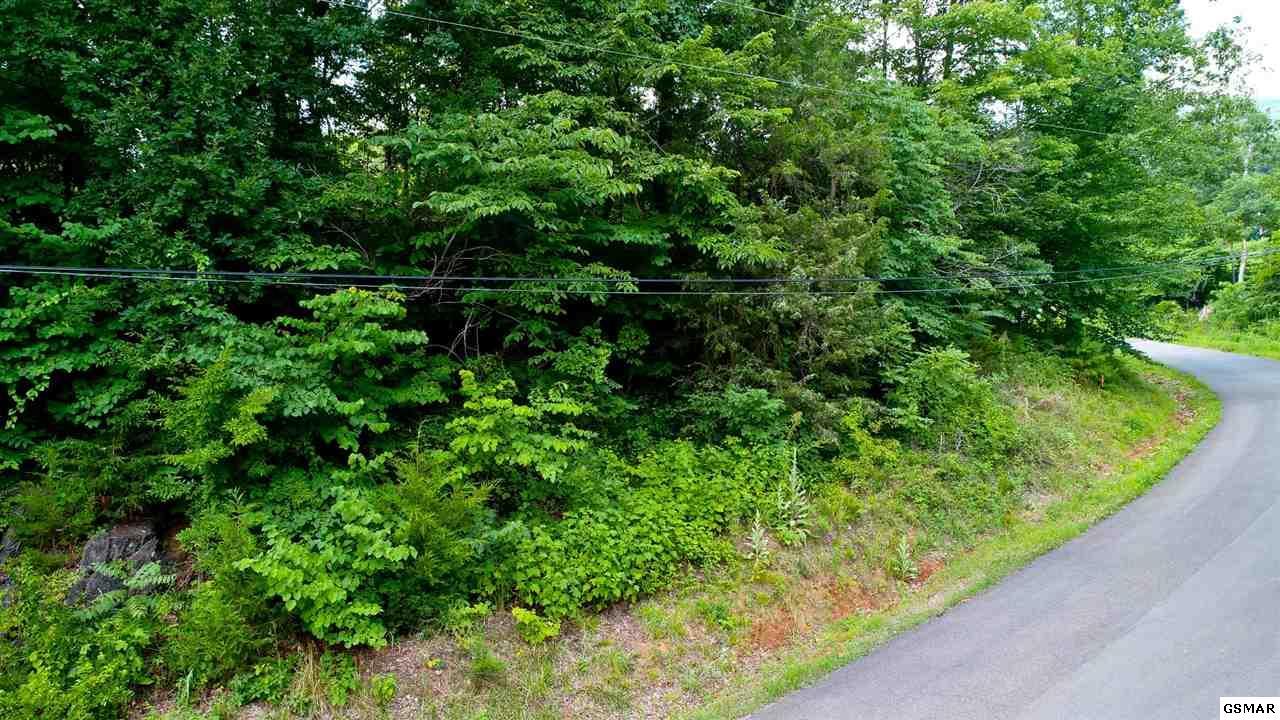 Lot 3 Tomahawk Drive, Cosby, TN 37722