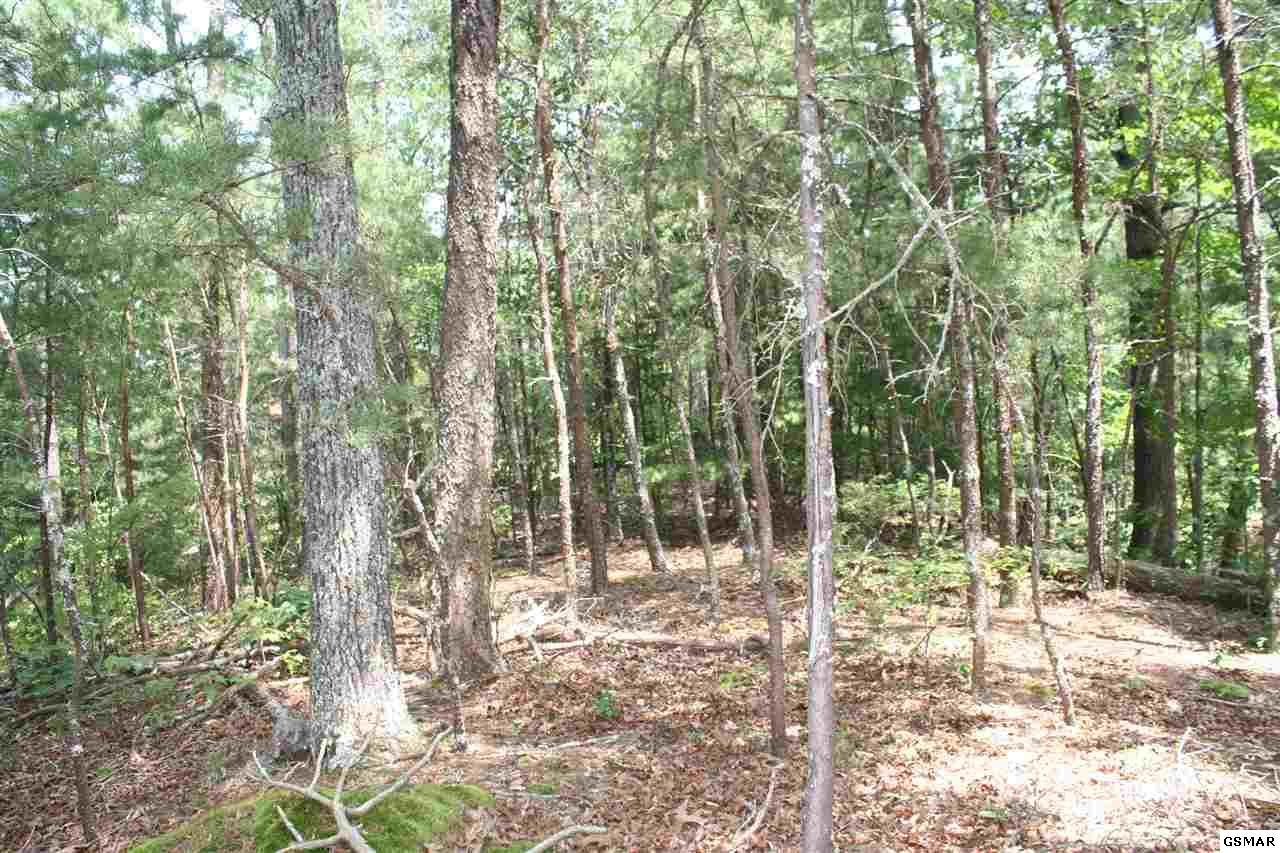 Mountain Trail Way, Sevierville, TN 37722