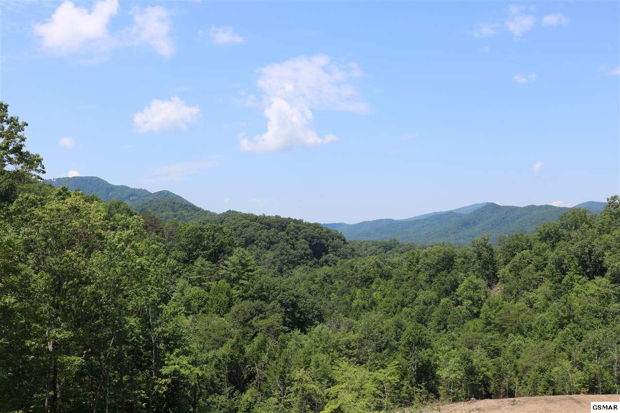 Lot 38 Coopers Hawk Way, Sevierville, TN 37862