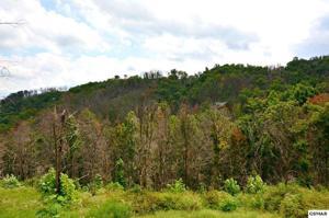 658 Pinecrest Drive, Gatlinburg, TN 37738