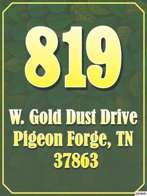 819 W Gold Dust Drive, Pigeon Forge, TN 37863