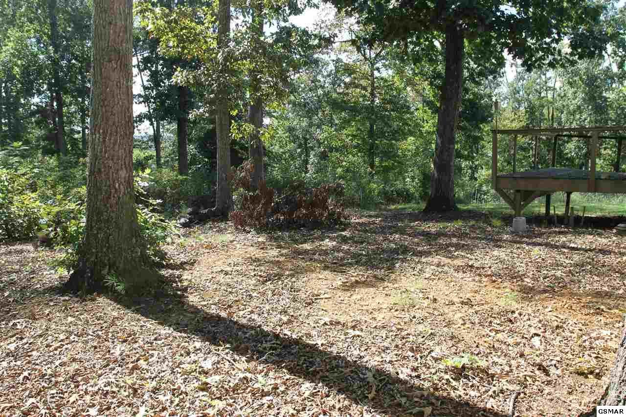 1729 Walnut Hill Ln, Sevierville, TN 37876