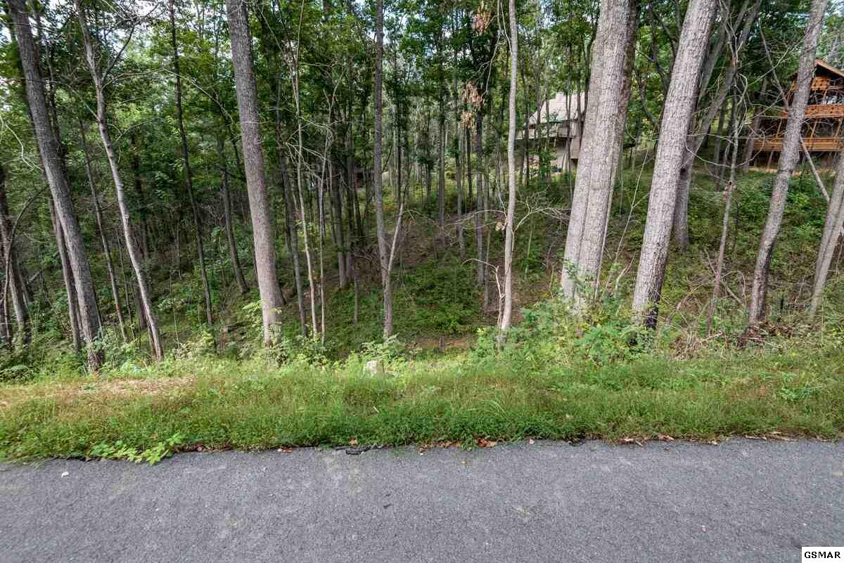 Lots 10, 11, 31 Deer Path Ln, Gatlinburg, TN 37738