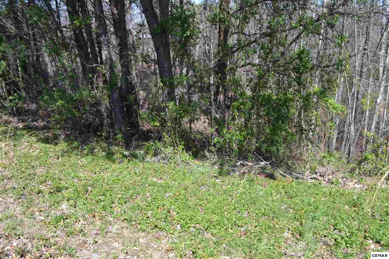 Lot 39 Kings Hills Blvd, Pigeon Forge, TN 37863