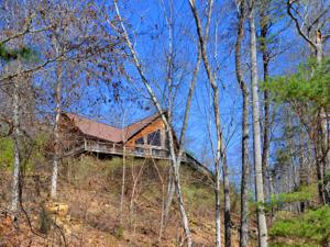 152 Pearl Point, Sharps Chapel, TN 37866