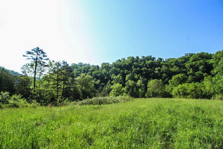 Kettle Hollow, Maynardville, TN 37807