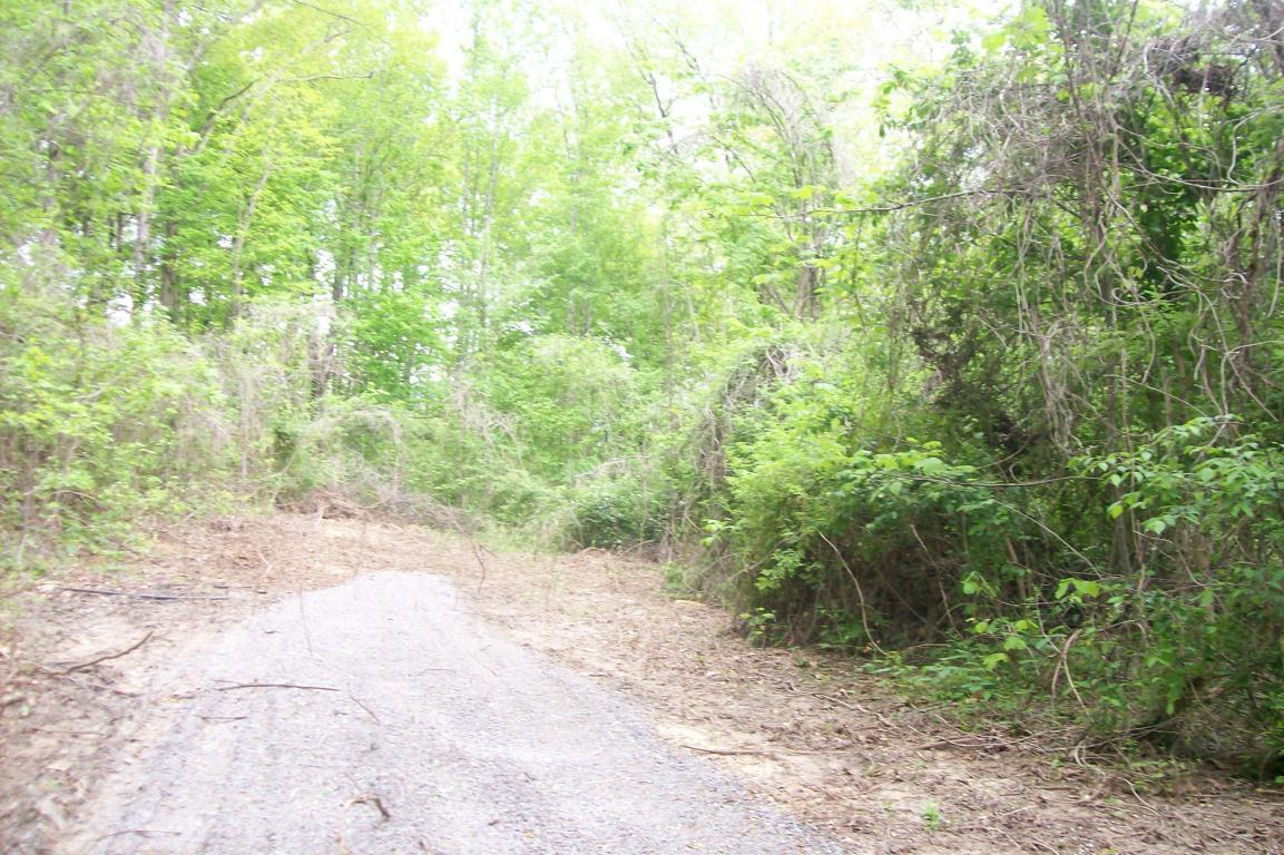 Bowman Drive, Jacksboro, TN 37757