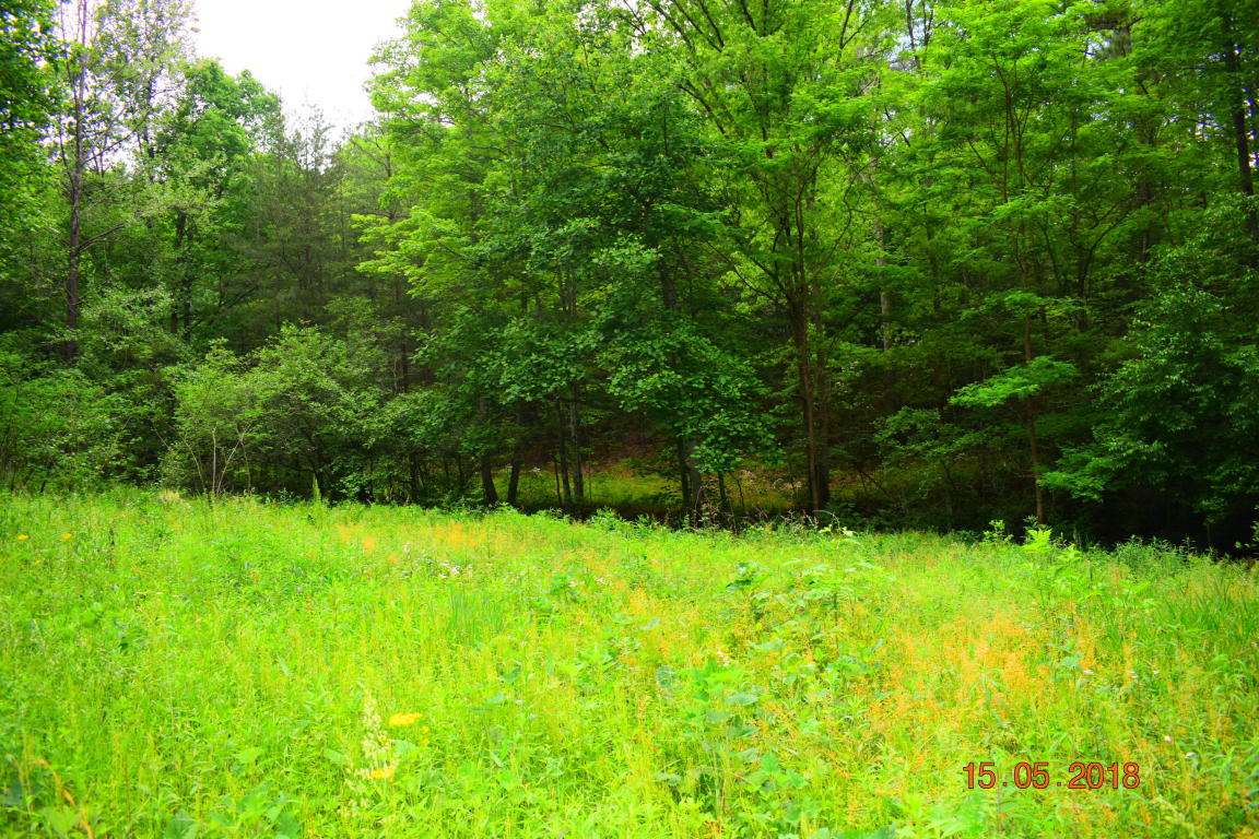 Hatcher Mountain Rd, Sevierville, TN 37862