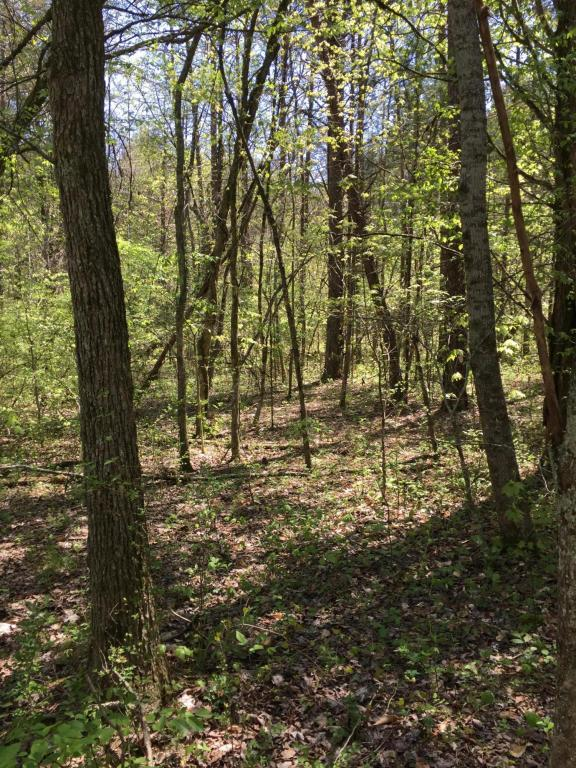Gadson Lane, Powell, TN 37849