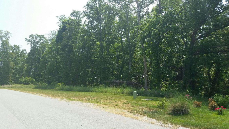 118 Roaming Fawn Drive, Rockwood, TN 37854