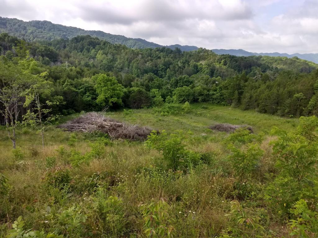 1832 Clinch Valley Rd, Sneedville, TN 37869