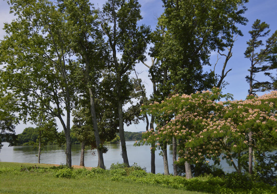 Lot 457 Pointe Vista Drive, Rockwood, TN 37854