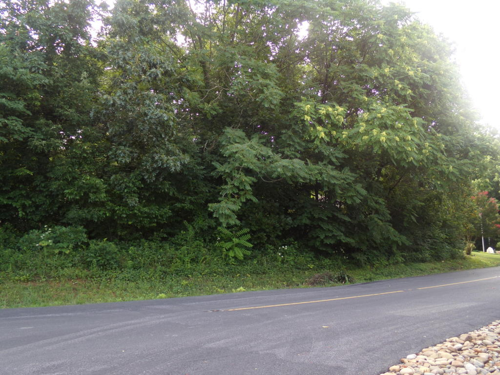 297 Dudala Way, Loudon, TN 37774
