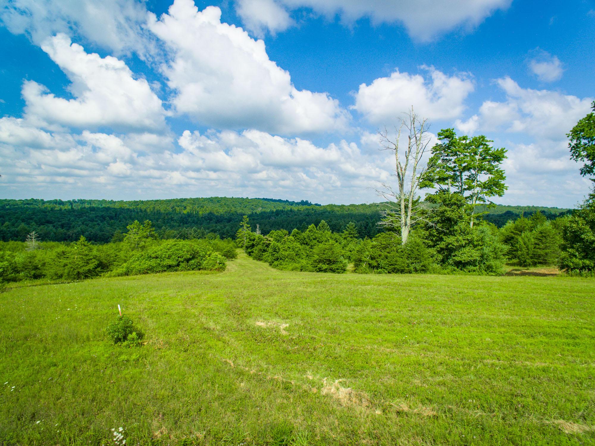 Lot 3 Mountain View Drive, Deer Lodge, TN 37726