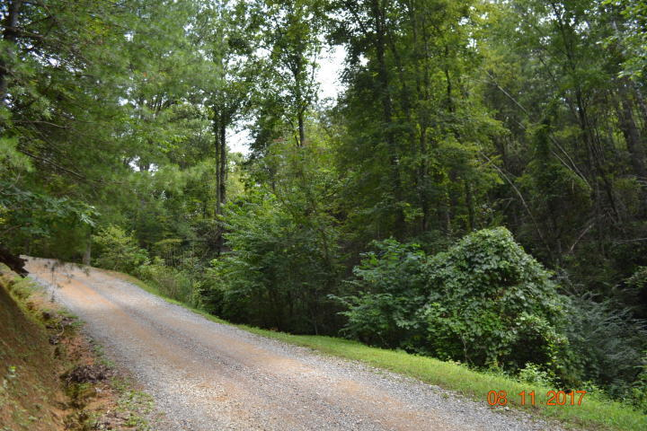 Bruce Ogle Way, Sevierville, TN 37862