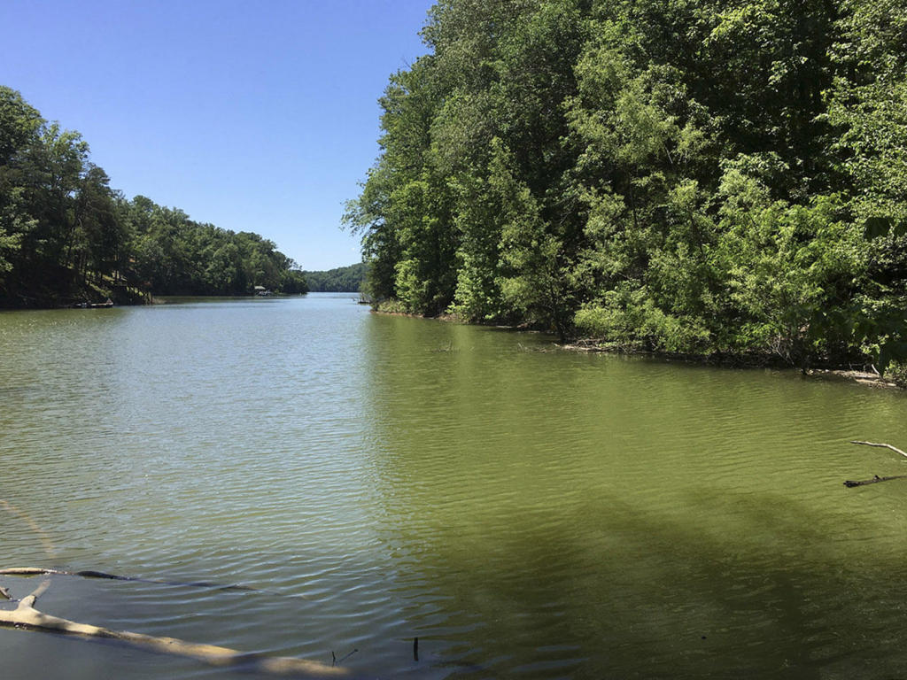 Lot 1r Beechwood Drive, Dandridge, TN 37725