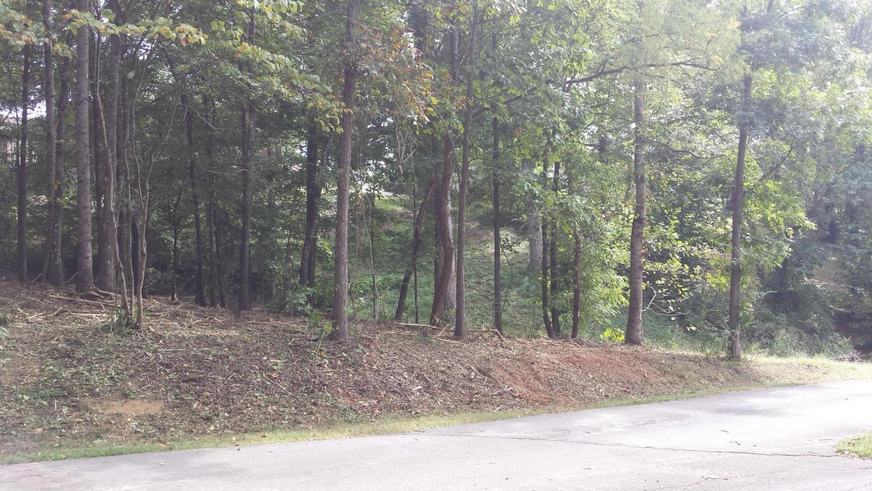 121 Timberlake Drive, Greenback, TN 37742
