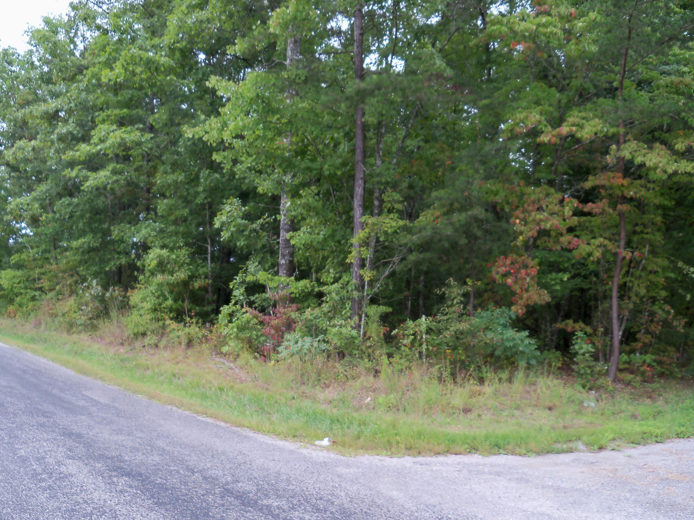 Ett Brown Rd, Deer Lodge, TN 37726