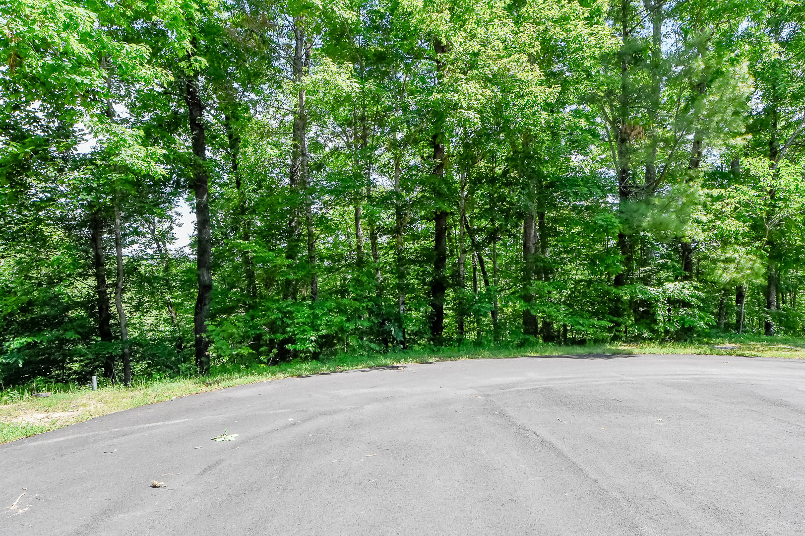 Cold Springs Trace, Townsend, TN 37882