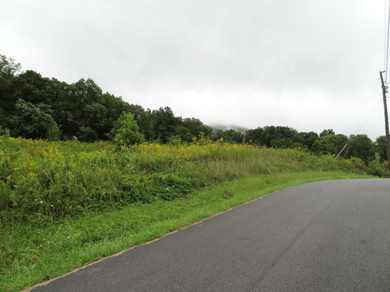 Lot 29 Sugar Tree Drive Drive, Sevierville, TN 37876