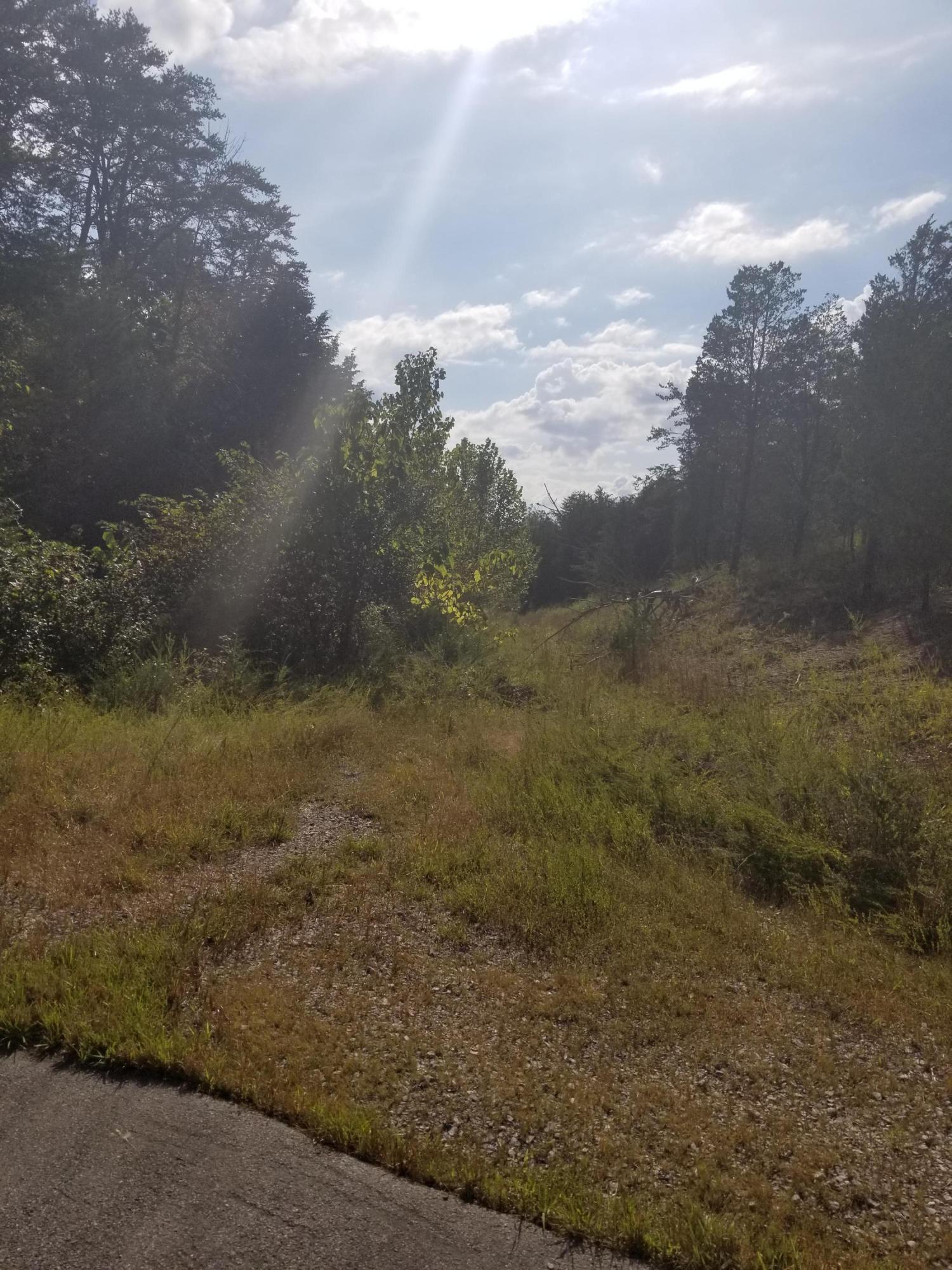 Grande Vista Drive, Dandridge, TN 37725