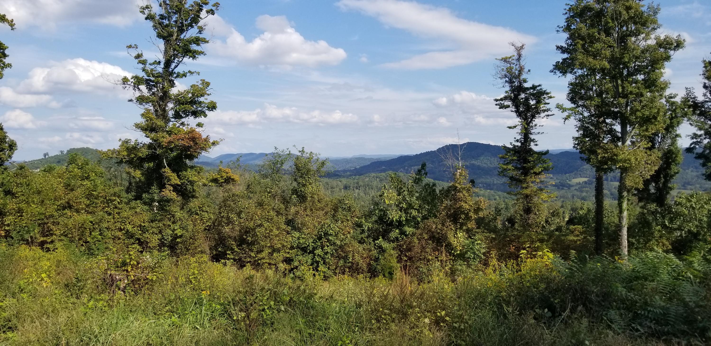Crown Hill, Maynardville, TN 37807