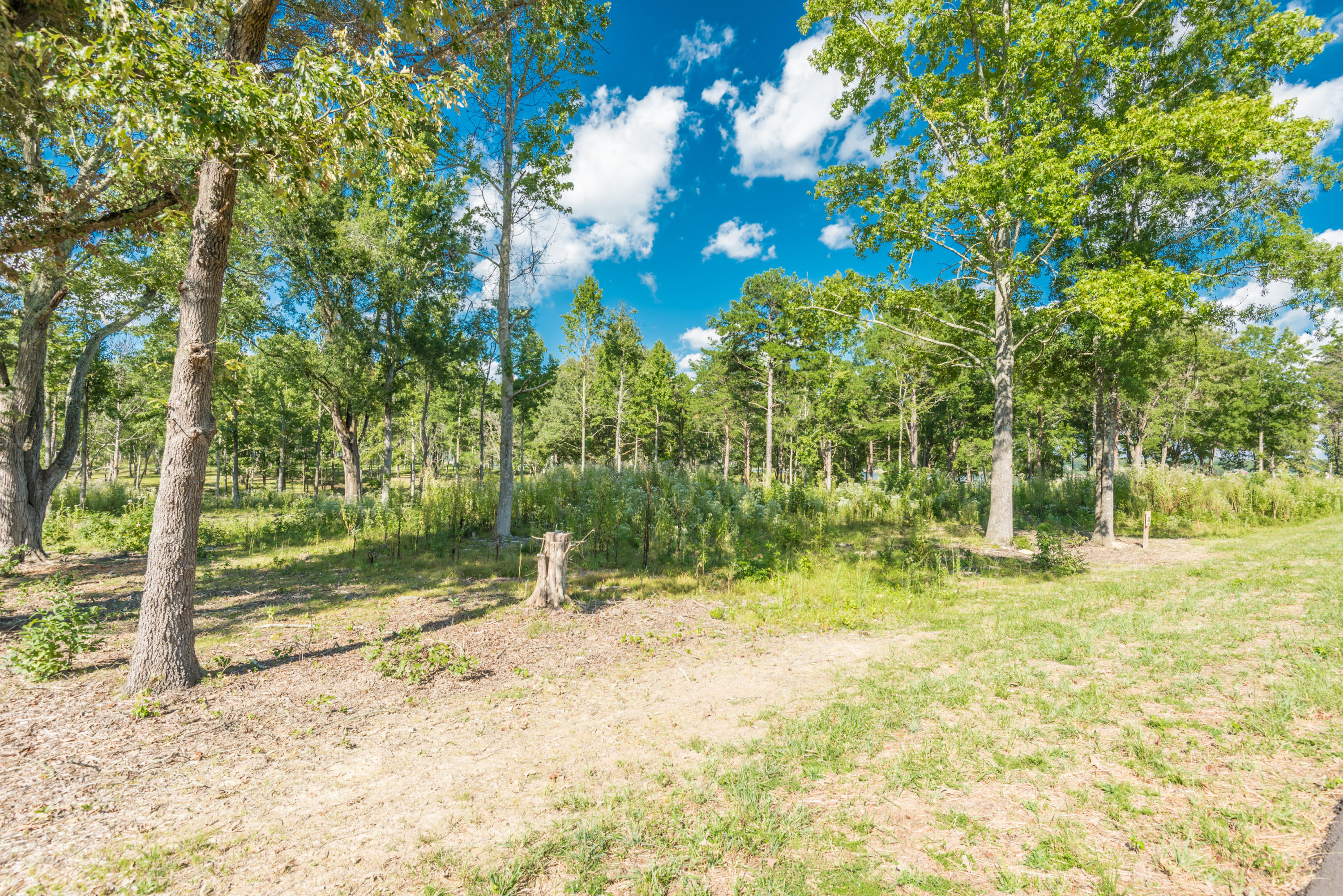 Lot 44 Lakeside Court, Dandridge, TN 37725